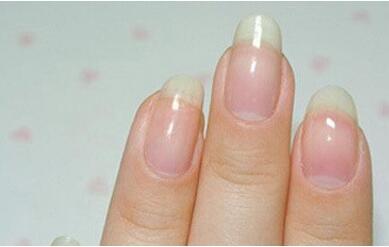 法式美甲步骤2,将白色的指甲油涂在多空泡沫上,捏挤多孔泡沫,在指甲